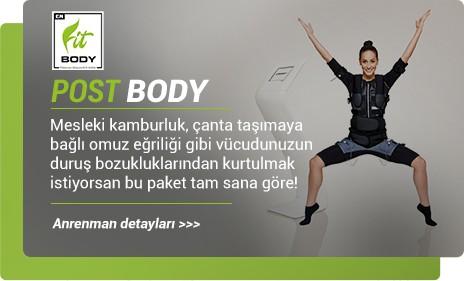 Posture body